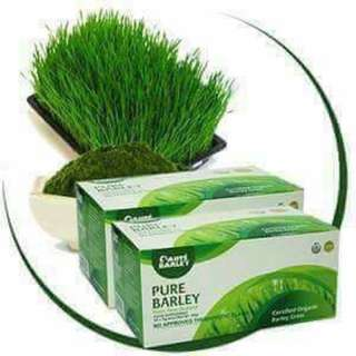 Sante barley juice organic