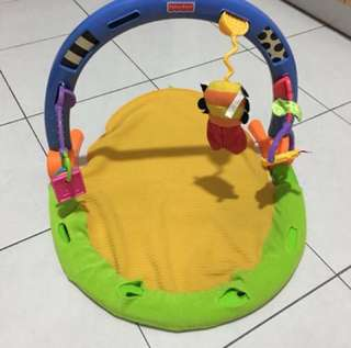 ❤️ Fisher Price Playmat