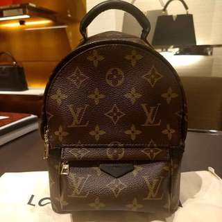Louis Vuitton Palm Spring Mini Backpack