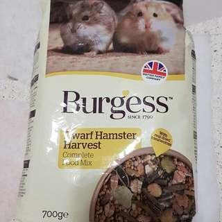 Burgess dwarf hamster harvest