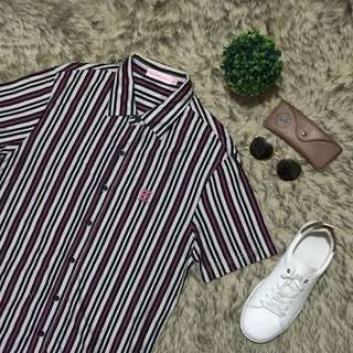 Stripes ShortSleeves Button Down Polo