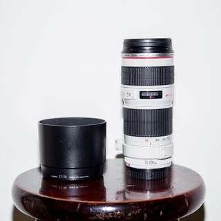 CANON EF 70-200mm F4 L USM 變焦望遠鏡頭