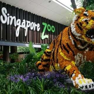 Zoo etix fixed date