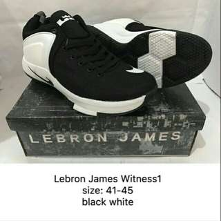 Men's Brand new shoes
