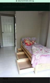 Common room near Bkt Panjang MRT for Rent