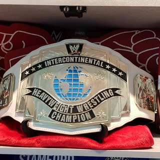WWE INTERCONTINENTAL COMMEMORATIVE DANIEL BRYAN YES YES YES SIGNED BELT