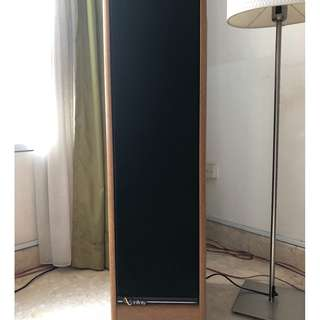 Infinity Speaker/s