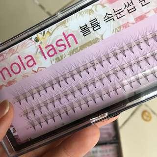 Mola Volume Lash series / Mink Lash