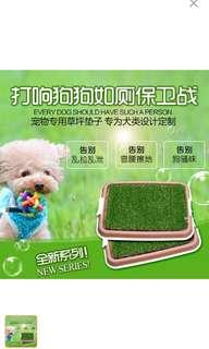 Pet Lawn