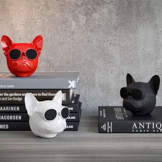 AeroBull Nano Wireless Bluetooth Speakers