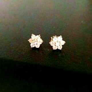 Gorgeous Fancy Earrings