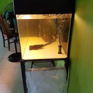 3ft Fish Tank PRICE REDUCED**