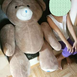 Teddy Bear (3 feet tall)