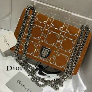 Dior bag limited edition