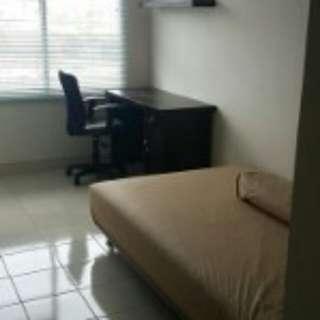 Apartment type studio