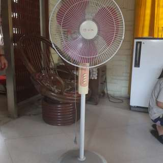 Camel Electric Fan
