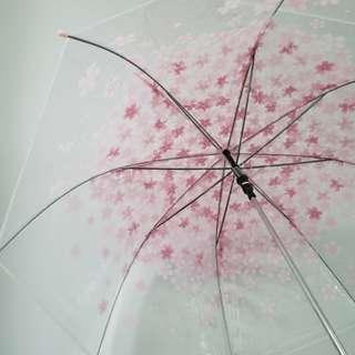 韓國櫻花雨傘