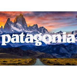 Authentic Patagonia P6 Logo Tee Size Chart
