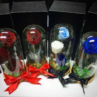 Preserved rose / rose / terrarium / flower / gifts / Mother's Day present