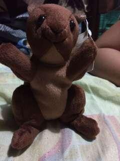 Squirrel stuff toys (Rush) REPRICE