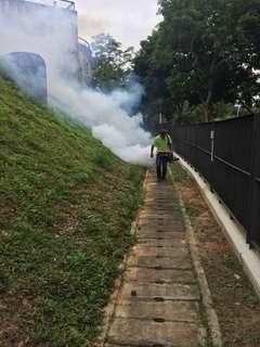 Pest Control / Kawalan berkesan serangga perosak