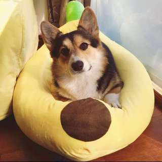 Comfy Banana Dog Bed