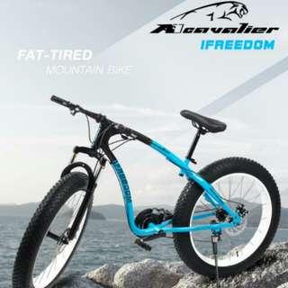 Fat-tired Mountain Bike