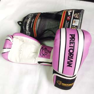 Boxing Gloves and Handwraps