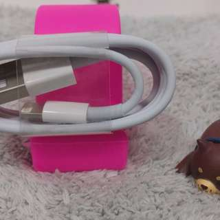iphone 充電線(Charging Cable