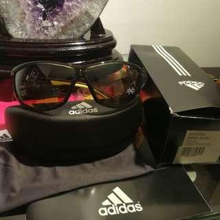 Adidas Sunglasses Daroga A416 6050 | Transparent Green Lime