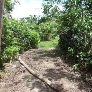 Titled Lots for Sale near Tagaytay