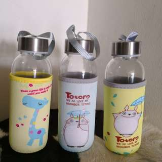 Glass water bottle 300ml