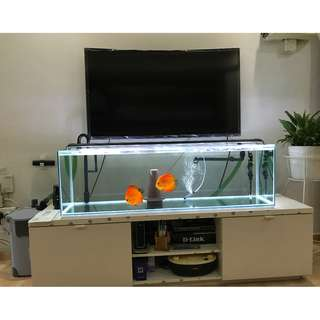 4Feet TV Console Fish Tank with Accessories (Plug & Play) (Revised & Re-post)