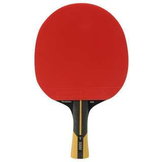 Table Tennis Coaching/Sparring partner