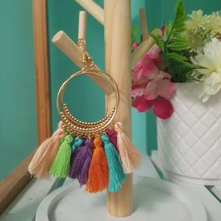 Multicolour tassel earrings