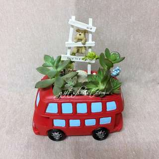 This Month Special: Succulent Plants In London Double Decker Bus