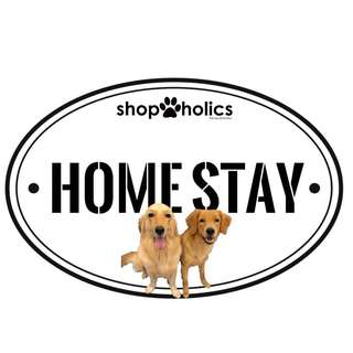 Doggos Home Stay (Pet Dog Home Boarding Services)  - Punggol