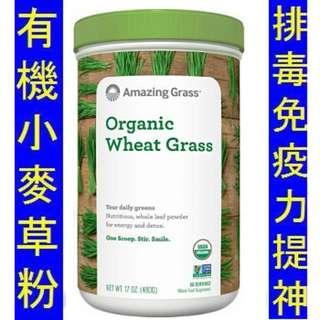 Amazing Grass Wheat Grass Powder (480g) 有機小麥草粉 蔬菜粉 免疫力 排毒