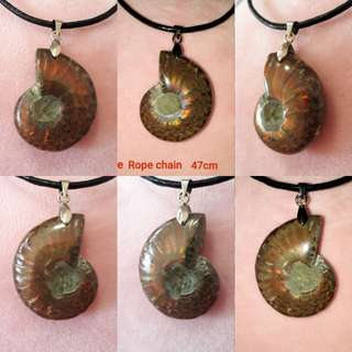 🎆Special Offer🎆Nice Natural Ammonite pendant(天然斑彩螺吊坠) from Madagascar, very nice fire. Help bring Fortune, change/spin fate.(转运招财发财螺)