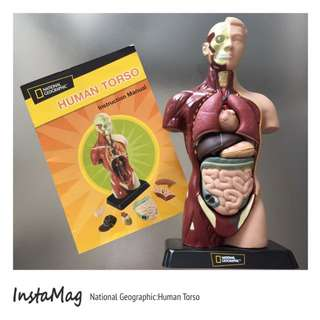 National Geographic Human Torso