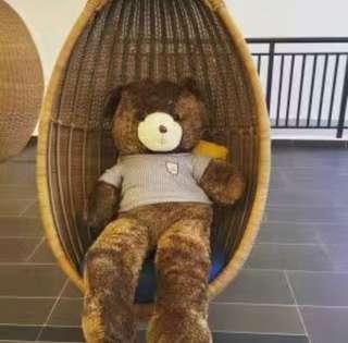 Teddy Bear READY STOCK