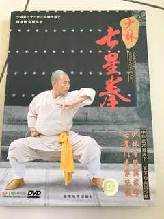 Martial arts. Shaolin fist