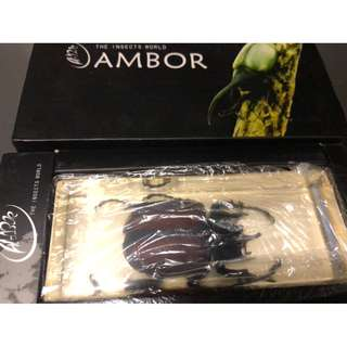 Ambor the insects world 3款