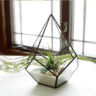 Glass Geometric Greenhouse for Succulent Plants-Pre-order online only