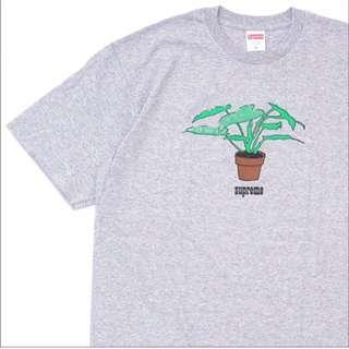 Supreme plant tee植物踢 灰色L號