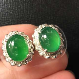 HQ icy green Jadeite Earring Cabochons