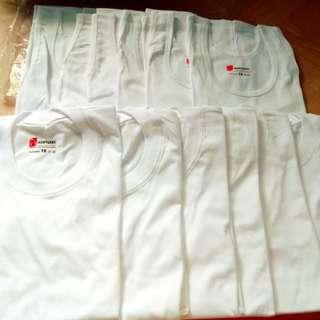 White Sando wear/kentucky