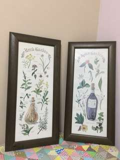 Vintage frames with herbs theme