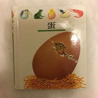 第一個發現系列~蛋