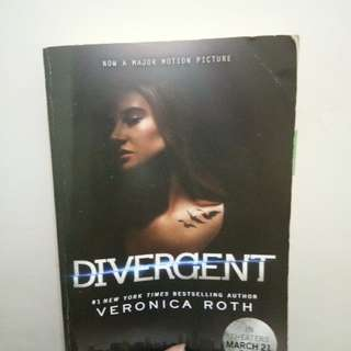 Pre-loved Divergent Book